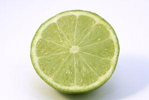 Wie zum Download von LimeWire Pro mit normalen LimeWire