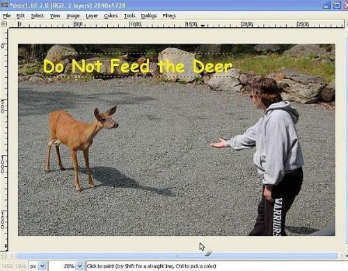 Wie man ein Bild mit GIMP Freeware bearbeiten